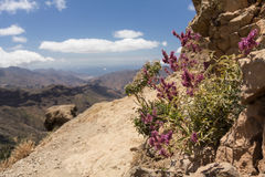 Uma vista de Roque Nublo em Gran Canaria Imagens de Stock