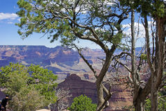 Uma vista do Grand Canyon Fotografia de Stock