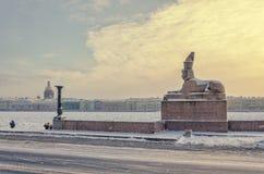 Uma vista do Spxinx na terraplenagem da universidade na tempestade de neve foto de stock royalty free