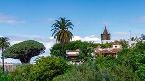 Uma vista estranha de Dragon Tree, da cidade de Icod de los Vinos e da igreja fotografia de stock