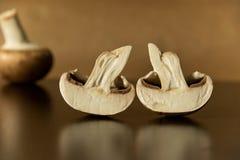 Uma vista lateral do únicos cogumelos marrons cortou ao meio - reflexão Imagem de Stock Royalty Free