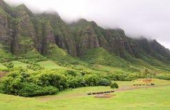Uma vista magnífica do rancho de Kualoa fotografia de stock