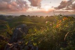 Uma vista maravilhosa a refletir Fotos de Stock Royalty Free