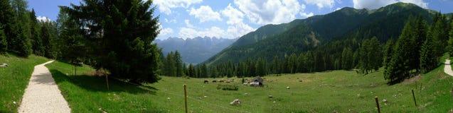 Uma vista panorâmico de alpes Italy de Dolomiti Foto de Stock Royalty Free
