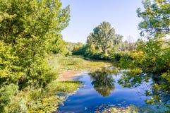 Rio quieto no parque Imagem de Stock Royalty Free