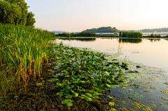 Vista do rio de Dniper na manhã fotos de stock