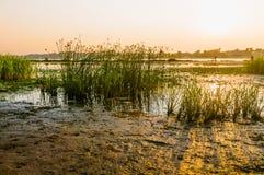 Vista do rio de Dniper na manhã foto de stock royalty free