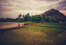 Uma vista sereno dos campos e do monte foto de stock royalty free
