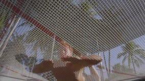 Uma vista sob o trampolim como um homem no short e o núcleo desencapado nela salta filme