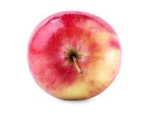 Uma vista superior de uma maçã inteira Uma maçã suculenta, isolada em um fundo branco A multi-colored healthful apple Doce foto de stock royalty free