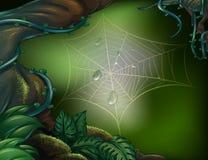 Uma Web de aranha em uma floresta úmida ilustração stock
