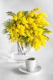 Uma xícara de café e um vaso dos ramos da mimosa em um fundo branco Foto de Stock