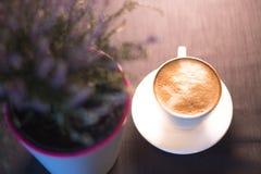 Uma xícara de café perto de uma planta em um potenciômetro com um fundo borrado Foto de Stock