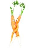 Umarmung von Liebespaarkarotten stockfotos