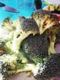 Umas partes dos brócolis na luz solar imagem de stock royalty free
