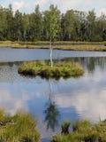 Šumava Imagen de archivo libre de regalías