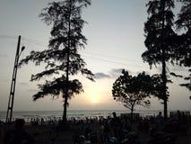 Umbergaon海滩古杰雷特树日落夏天 库存图片