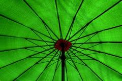 umberlla groene volledige kleur stock afbeelding