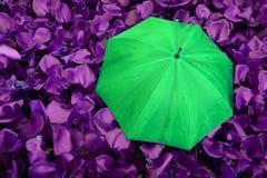 umberlla volledige kleur stock afbeeldingen