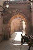 Umbral de Marakesh con el donke Foto de archivo libre de regalías