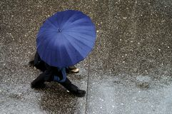 Umbrella. People uder the umbrella royalty free stock photos