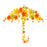 Umbrella from autumn leaves Royalty Free Stock Image