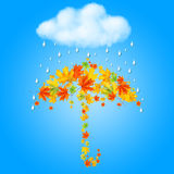 Umbrella from autumn leaves and rain Stock Photo