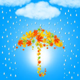Umbrella from autumn leaves under Stock Images