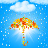 Umbrella from autumn leaves under cloud and rain Stock Image