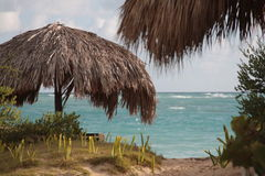 Umbrella on the beach. Umbrella made with palm leaves protects to sun on the beach Royalty Free Stock Photo