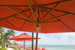 Umbrella beach. A tropical resort offers red umbrellas to shade the tourist guests Royalty Free Stock Photography
