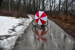 Umbrella and Bike Reflecting in the Water