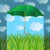 The umbrella closes a green grass from a rain Stock Images