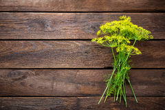 Umbrella dill Royalty Free Stock Image