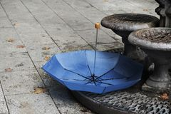 Umbrella and dry leaves on the street in Barcelona Stock Images
