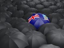 Umbrella with flag of falkland islands. Over black umbrellas Royalty Free Stock Photo
