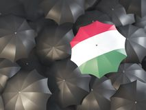 Umbrella with flag of hungary. On top of black umbrellas. 3D illustration Stock Images