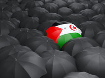 Umbrella with flag of western sahara Royalty Free Stock Image
