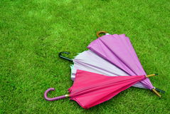 Umbrella, grass, autumn, rain, pink, green, triangle, colour, tone. The autumn is here...there is an umbrella needed Royalty Free Stock Photos