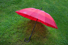 Umbrella on the grass Royalty Free Stock Photo