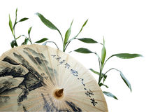 Umbrella and green bamboo. Traditional chinese paper umbrella and green bamboo Stock Photo