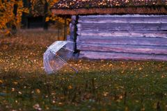Umbrella on green grass with leaves royalty free stock photo