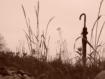 Umbrella on hill. An old black umbrella stands alone at the top of a hill against the sky with tall grass growing around it Stock Photo
