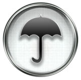 Umbrella icon grey Royalty Free Stock Image