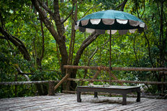 Umbrella in jungle forest on wooden surface Royalty Free Stock Image