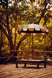 Umbrella in jungle forest on wooden surface Royalty Free Stock Images
