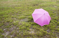 Umbrella on lawn yard Stock Images