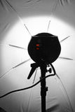 Umbrella lights. Photographic Umbrella Light Equipment Royalty Free Stock Photography