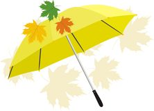 Umbrella and maple leaves Stock Images