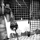 Umbrella - Mononchrmatic. A monochromatic photo of an umbrella and mail box and a door royalty free stock photo